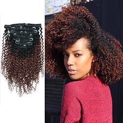 AmazingBeauty 8A Grade 3C 4A Ombre Kinkys Curly Clip in Hair