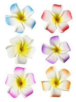 6pc 2 5 hawaii hawaiian plumeria flower