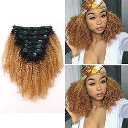 Sassina Two Tone Afro Curly Human Hair Clip-in Extensions Fo